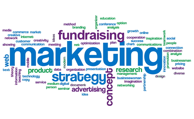 rallying support marketing communications fundraising Excel Fundraising consulting